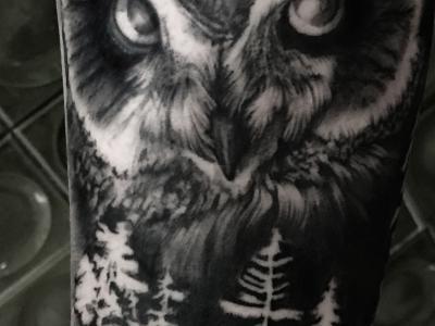 tatua-11