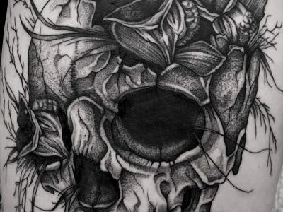 tatua-6
