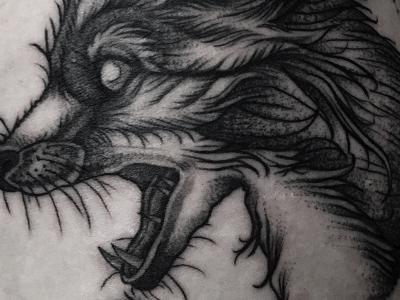 tatua-7